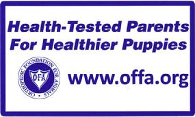 Cher Car Kennels OFA certified breeding stock