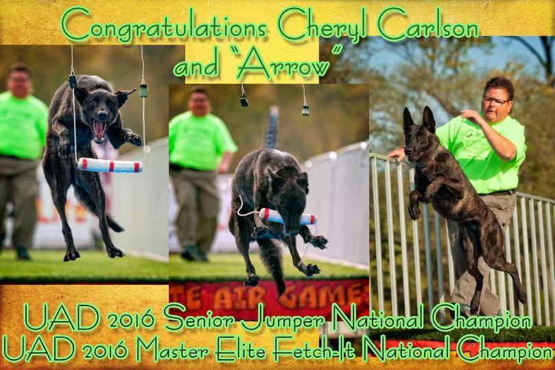 ROM-I USJCH UUF UNJ CH Cher Car�s Me and My -2016 National SENIOR Jumper Champion & 2016 National Master Elite FETCH-IT Champion