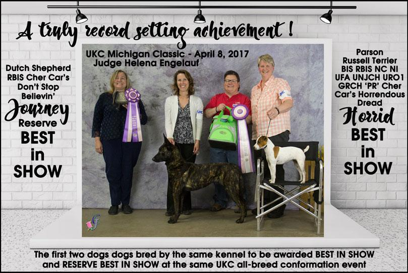Best in Show and Reserve Best in Show awarded to 2 dogs bred by the same kennel